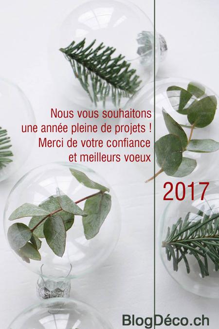 petit-voeux-2017-blog